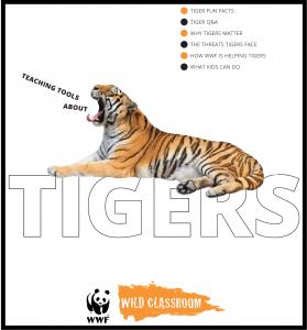 Tiger Toolkit