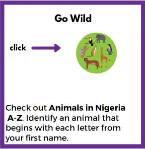Nigeria Challenge