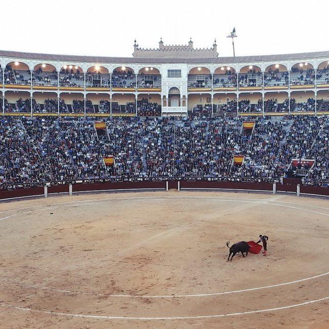 bullfight-406865_1280