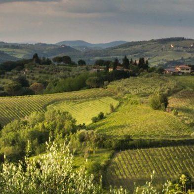 tuscany-2044332_1920